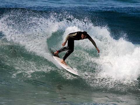 surfing gardens narrabeen